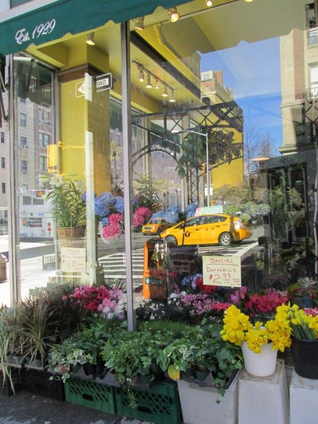 Floral Shop City Reflections