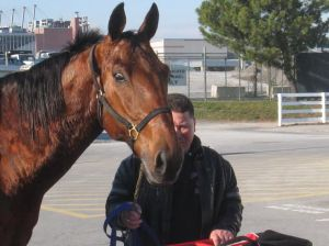 Presenting ADDWATER: I now own a share of this racehorse!