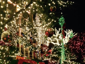 Gorgeous: the Christmas lights of Dyker Heights, Brooklyn.