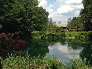 The gorgeous grounds of the Carter Museum and Library. Wow!